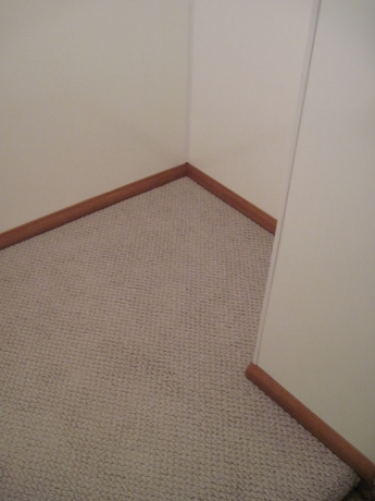 A carpet remnant and baseboard finished off the cedar closet.